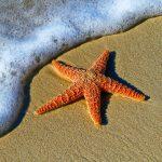 Ontspan en groei op het strand met 3 personal branding tips